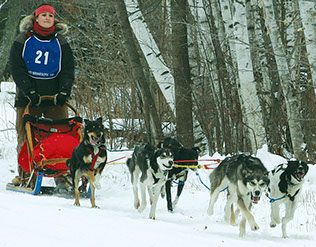 Mid-Minnesota Dog Sled Race