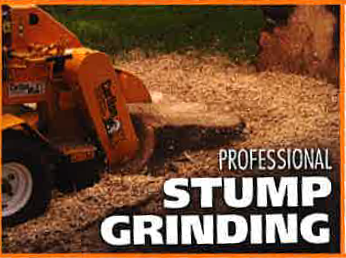 Professional Stump Grinding